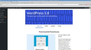 WordPress telling me about itself